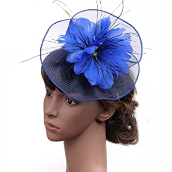 Tukistore Tocado de la Boda Pluma Net Velo Fascinator Pinza de Pelo Sombrero  Nupcial Fiesta Foto Headwear Diadema Sombrero de Cóctel Fiesta del Té  Kentucky ... 9aa890e49749
