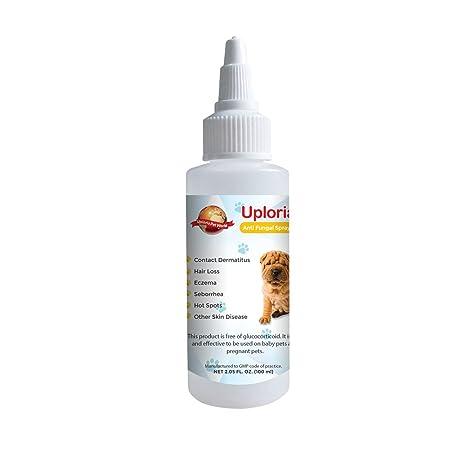 Spray Natural Para El Tratamiento De Las Alergias Cutáneas De Los Perros Que Alivia La Picazón