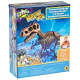 Toys R Us Toys For Labs - Best Reviews Guide
