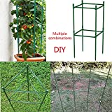 Plant Cages Tomato Garden Cages Stakes Vegetable