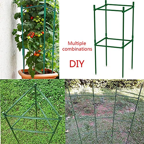 F.O.T 3-Sets Tomato Cage Plant Support Garden Stakes 2ft Long Steel with Plastic Coated Plant Sticks, Sturdy Garden Plant Support Stakes with Connecting Rod (3) by F.O.T (Image #2)