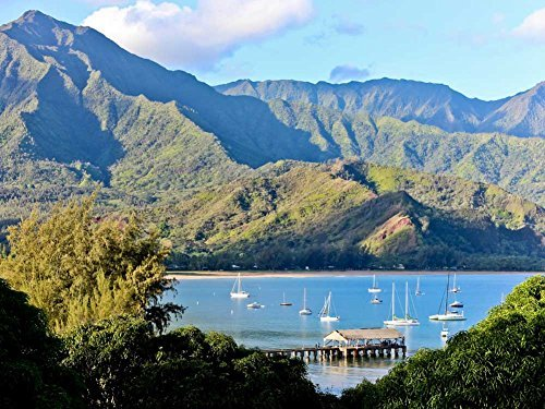 Hanalei Pier – Hanalei Bay North Shoreカウアイ島ハワイ – キャンバスプリント28 x 20 cm、額なし) B073VNZ69G