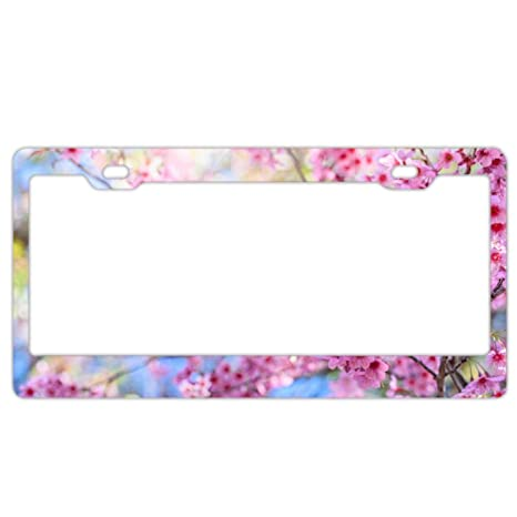 Colorful Lines Abstract Pattern Auto Car License Plate Frame Tag Holder 4 Hole