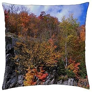 Autumn On A Rock Cut - Throw Pillow Cover Case (18