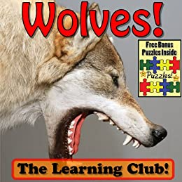 Wolves! Learn About Wolves And Learn To Read - The Learning Club! (45+ Photos of Wolves)