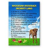 Rhodesian Ridgeback Property Laws Fridge Magnet