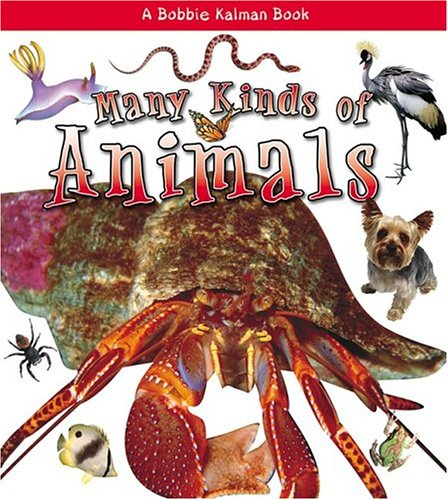 Download Many Kinds of Animals (What Kind of Animal Is It? (Paperback)) pdf epub