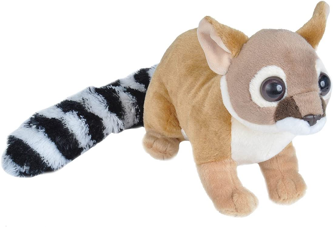 Wild Republic Ringtail Cat Plush, Stuffed Animal, Plush Toy, Gifts for Kids, Cuddlekins 12 inches