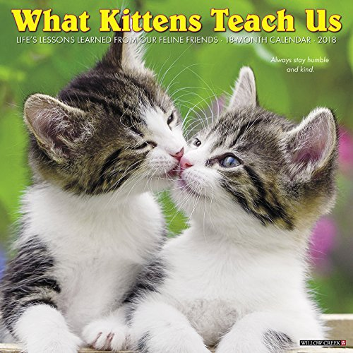 What Kittens Teach Us 2018 Calendar
