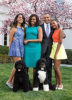 Awesome President Obama Family Poster. Super High Quality (18 x 24)