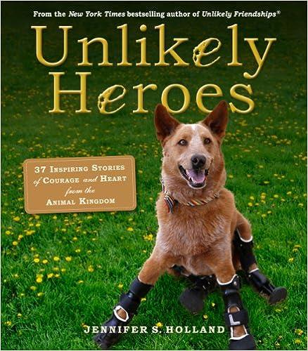 Unlikely Heroes (Unlikely Friendships)