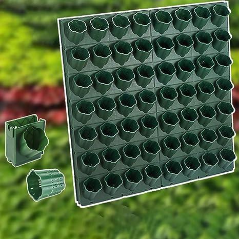 ZDYLM-Y Bolsillos jardín Vertical Pared, Jardín Vertical Interior, Uso en Interiores, Contiene Variedad de Plantas: Amazon.es: Deportes y aire libre