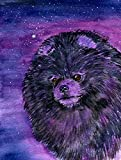 Caroline's Treasures SS8501GF Starry Night Pomeranian Flag, Small, Multicolor