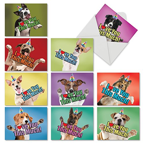- 10 Boxed 'Doggie in the Window' Assortment of Birthday Cards (4'' x 5 ¼'') with Envelopes - Assorted Dog & Puppy Note Card Stationery for Happy Bday Wishes, Thank You, Congratulations #M6481OCB