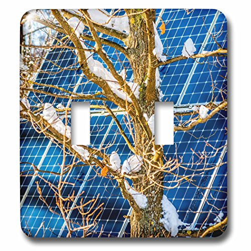 3dRose Alexis Photography - Objects - Young snow covered oak tree and a solar power panel in winter park - Light Switch Covers - double toggle switch (lsp_280889_2) by 3dRose