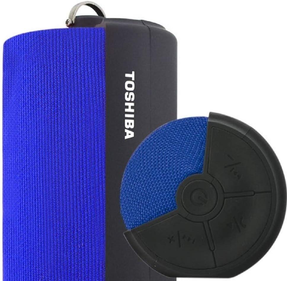 Amazon.com: Toshiba fab Portable Bluetooth Speaker: Home ...