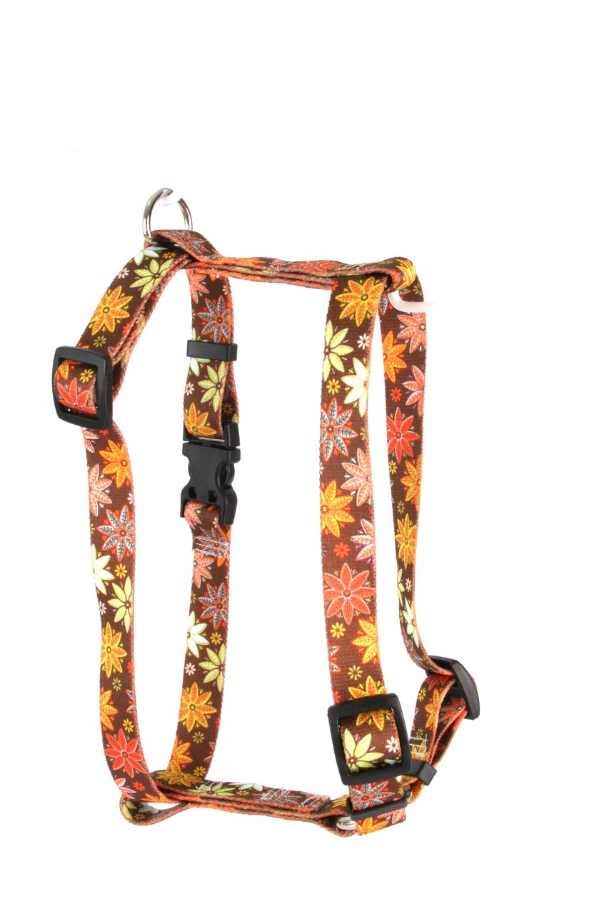 Yellow Dog Design Autumn Flowers Roman Style H Dog Harness, X-Large/1'' Wide by Yellow Dog Design (Image #1)