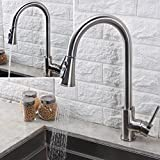 BHQ 1006 Kithcen Sink Faucet, Modern Stainless Steel Single Handle Single Hole Pull Out Spray , Pull Down Faucets , Brushed Nickel ASI
