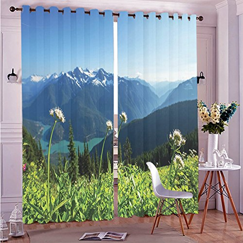 "Price comparison product image Two Panel Set Window Curtain Green Mountain Scenery Decor Lake and Snowy View Dandelions Thistle Flowers Sky Print Whi Polyester Window Treatments For Bedroom Diningroom Livingroom Dorm,  108""Wx84""L"