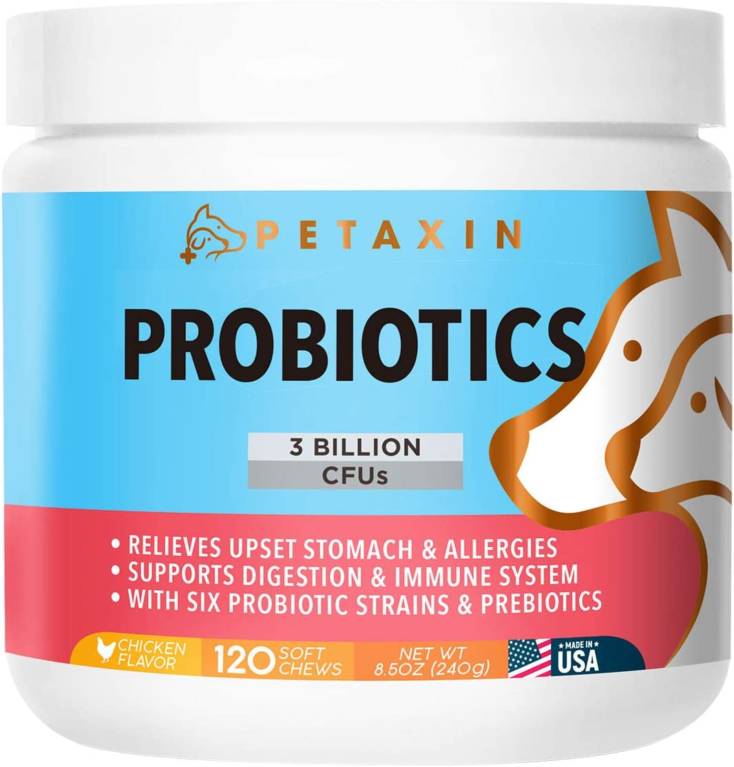 Petaxin Probiotics for Dogs – 6 Strains with Prebiotics – Supports Digestion and Immune System – Relieves Diarrhea, Upset Stomach, Allergies, Gas, Constipation, Bad Breath – Made in USA – 120 Chews
