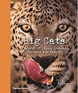 Big cats seymour simon 9780064461191 amazon books big cats in search of lions leopards cheetahs and tigers fandeluxe Ebook collections