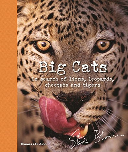 Big Cats: In Search of Lions, Leopards, Cheetahs, and Tigers