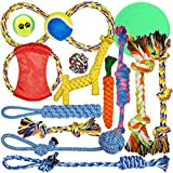 Holybird 14 Pack Dog Rope Toys Aggressive Chewers - Thick Floss Knots Dental Cleaning - Pets Puppy Chew Dog Rope Toy Assortment Small Medium Large Dogs