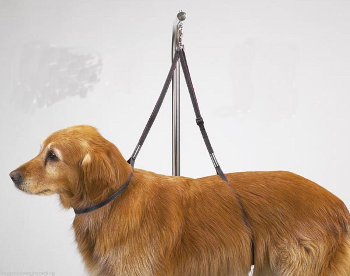 Amazon.com : Dog Grooming NO SIT LIE DOWN RESTRAINT HARNESS SYSTEM