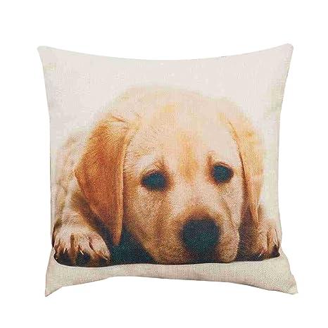 LAMEIDA Funda de cojín Almohada Decorativa con Animales Perro Funda Almohada de Lino Size 45×45cm (Golden Retriever)