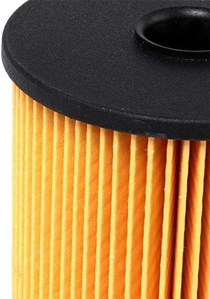 Pack of 1 Blue Print ADL142301 fuel filter