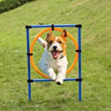 Anself Outdoor Pet Agility Exercise Sports Obedience Show Dogs Activity Hoop Jump Game Pole Set with Carrying Case