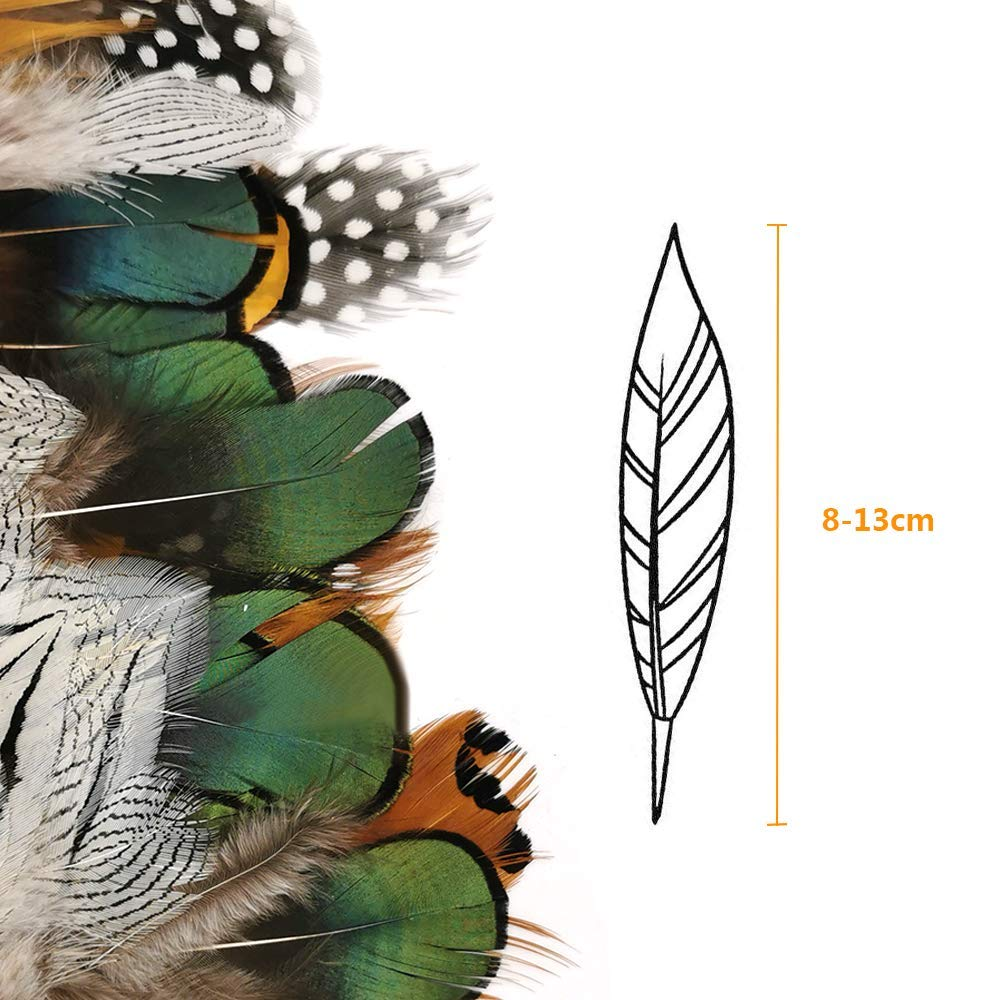 8 Styles of Feathers,Assorted Mixed Feathers for Craft,Decoration,Dream Catcher and Party 240 pcs