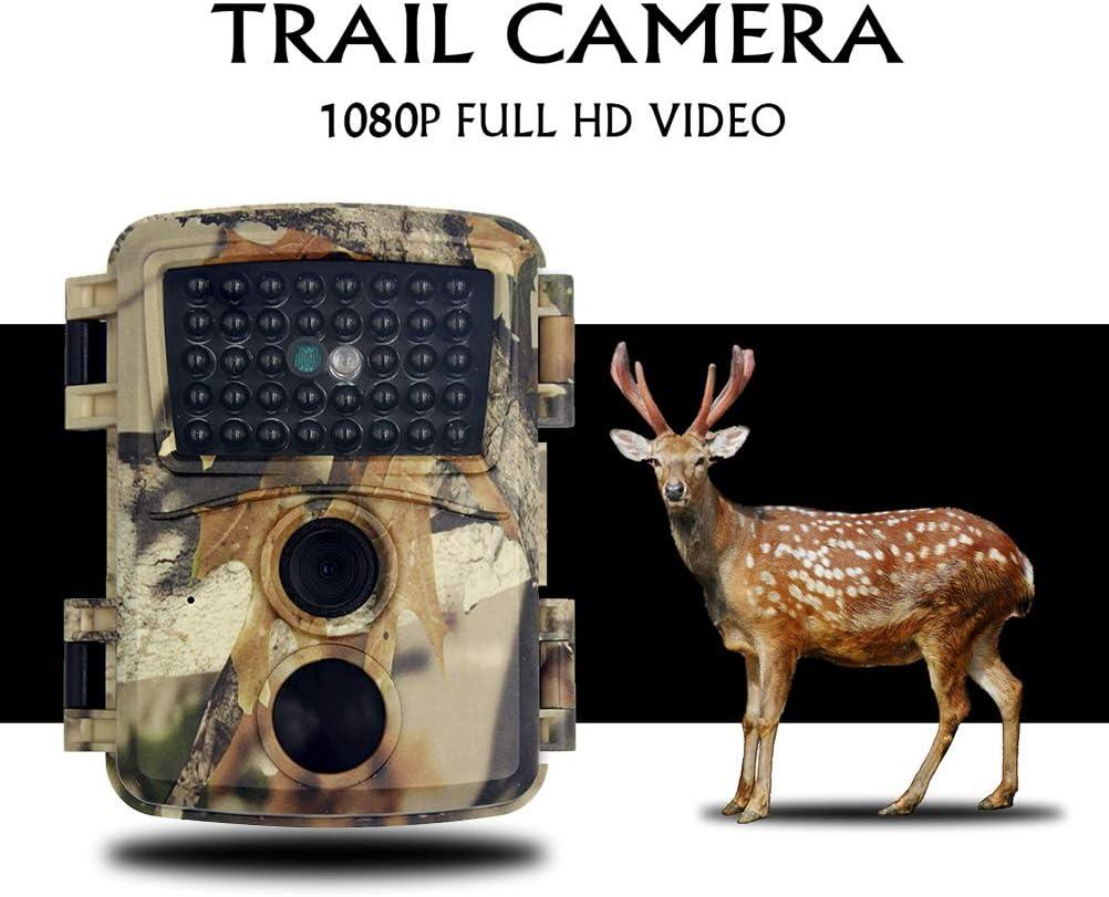 Rsoamy Nachtsicht Wildkamera IP66 wasserdichte Kamera f/ür die Wildwildjagd Digital HD 1080P WLAN Wildkamera Erkundung von Tieren im Freien