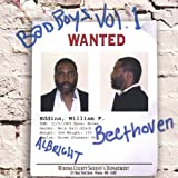 Vol. 1-Bad Boys