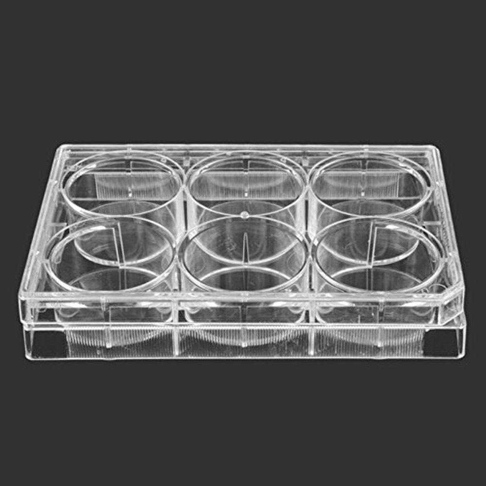 BIPEE Polystyrene Petri Dish 6 Well Cell Culture Plate, Sterile, Pack of 10