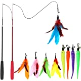 MeoHui Interactive Cat Feather Toys, 2PCS Retractable Cat Wand Toy and 9PCS Squiggly Worm Feathers Teaser Refills, Cat Toys f