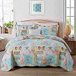 EAVD Bedding Sets Coastal Starfish Seashells 3 Piece Quilted Coverlet Set - Beach Theme House Nautical Patchwork Cotton Quilts and Comforters- Full/Queen