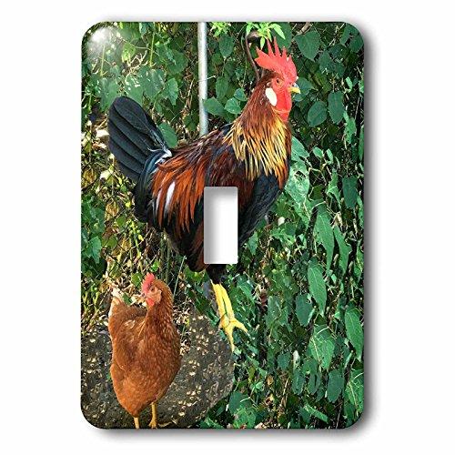 3dRose BrooklynMeme Farm Animals - Ameraucana Rooster - Ligh
