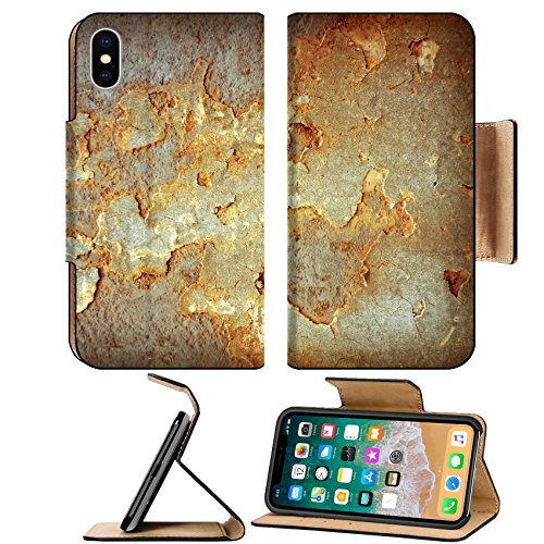 MSD Premium Apple iPhone X Flip Pu Leather Wallet Case Creative background Grunge wallpaper with space for your design IMAGE 22600504 (Leaves Creative Wallpaper)