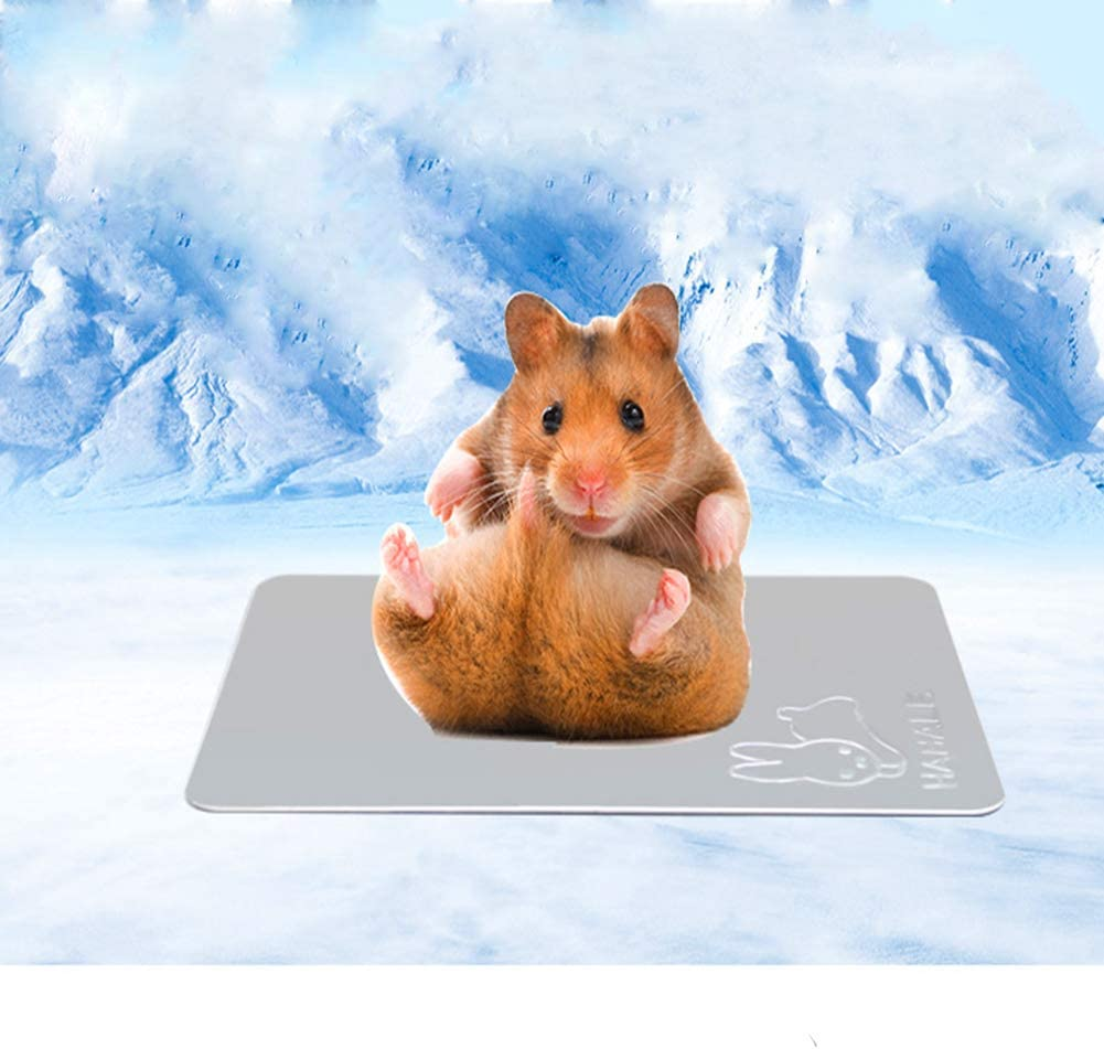 Yu-Xiang Hamster Cooling Bed Small Animals Ice Pad Cat Aluminum Cooling Mat Rest Plate in Summer for Lizard Rabbit Bunny Guinea Pigs Kitten Chinchilla and Other Pets