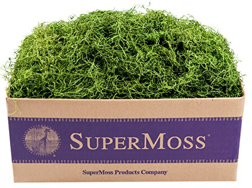 SuperMoss (26927) Spanish Moss Preserved, Grass, 3lbs - Preserved Grass