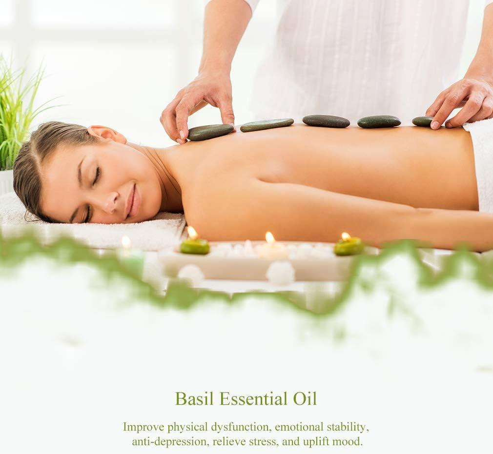 Aromaterapia Albahaca aceite esencial,100% pura Albahaca Aceite ...