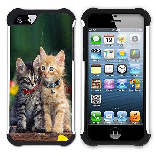 STPlus Gato en una caja Animal Doble Capa de Protección Rígido + Flexible Silicona Carcasa Funda Para Apple iPhone SE / 5 / 5S #14