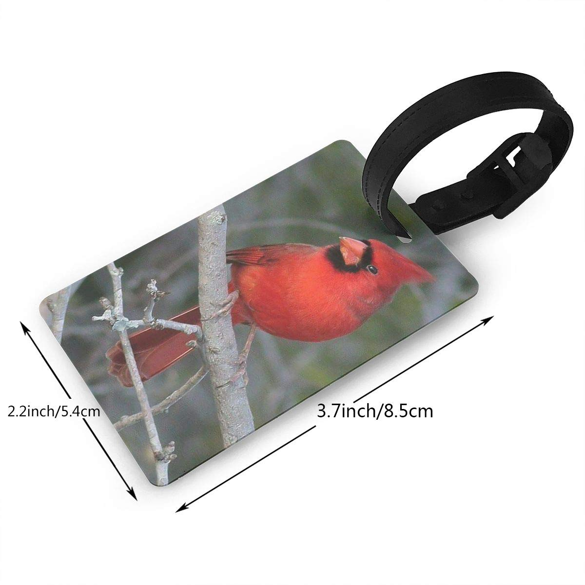 Cardinals Bird Baggage Tag For Suitcase Bag Accessories 2 Pack Luggage Tags