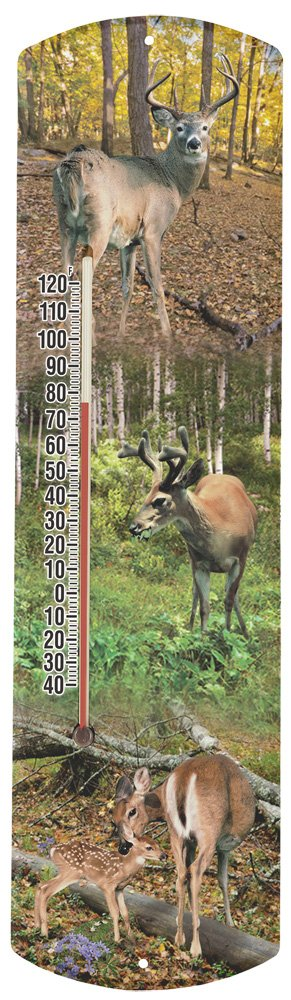 Heritage America by MORCO 375WD-P Whitetail Deer-Photos Outdoor or Indoor Thermometer, 20-Inch