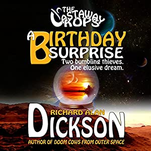 A Birthday Surprise Audiobook