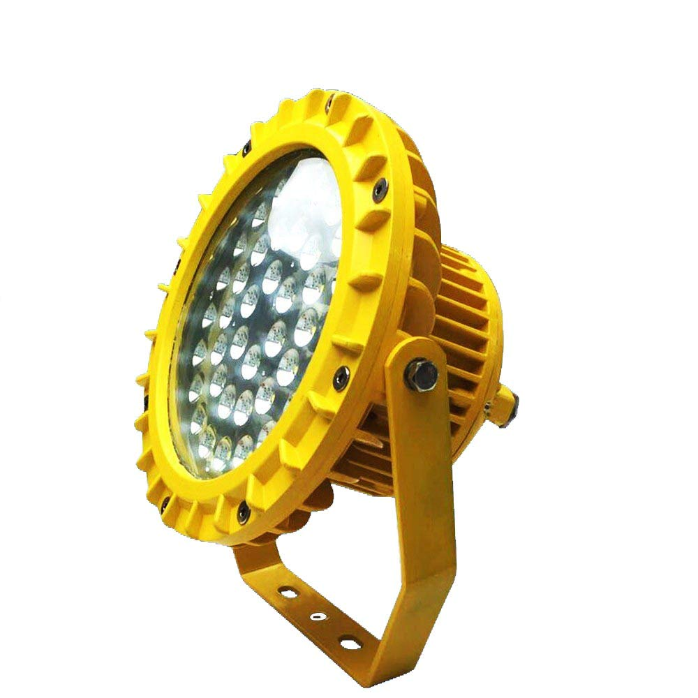 20w -240w led Explosion-Proof Light high Bay Explosion Proof led Light with Exdemb II CT6 and Anti-Corrosion Rating WF2, Luminous Flux >110Lm/w IP66 Waterproof ATEX LED Gas Station Light (80)