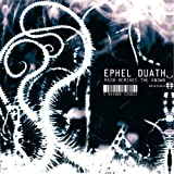 Pain Remixes the Known by Ephel Duath (2007-09-18)
