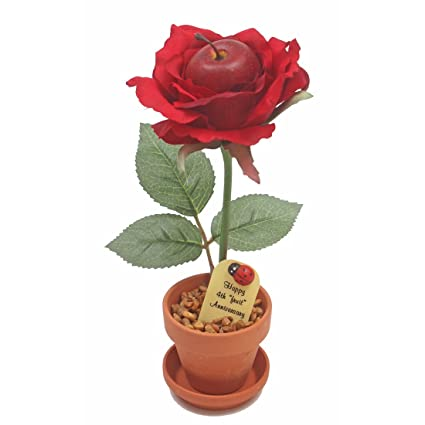 Amazon.com: 4th Wedding Anniversary Gift Potted (artificial) Fruit ...