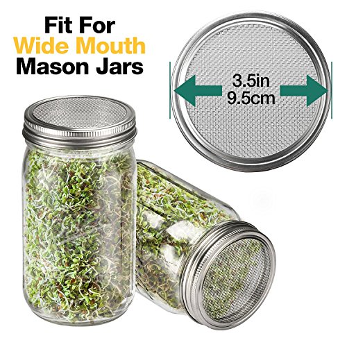 6 Pack Sprouting Lids for Wide Mouth Mason Jars Canning Jars,304 Stainless Steel Sprouting Jar Lid Kit Sprout Generator Set to Grow Your Own Organic Sprouts, 2.45Dollar/PCS (Jar not Included) by JamBer (Image #1)